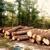 Grimshaw logging