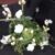 Jim's Florists
