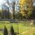 Stone Meadow Kennels