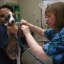 VCA Crown Hill Animal Hospital