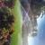 Jax Lawn & Sprinkler Inc
