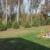 Paint Creek Nursery
