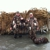 Barnards Fishing & Duck Hunting Guide Service