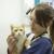 Manchaca Village Veterinary Care