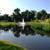 Platinum Ponds & Lake Management