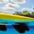 Disney's Typhoon Lagoon Water Park