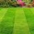 Pell city lawn care and landscaping