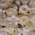 Snow Thornton Florists