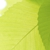 All Seasons Lawn & Tree Care Inc