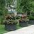 Wallitsch Landscaping