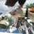 Lucky Dog Boarding, Daycare & Training