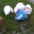 Mcminn Waste Removal