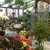 The Gardener's Center and Florist