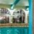 Embassy Suites By Hilton San Antonio NW I-10