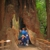 Muir Woods Park Tours