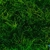Garrett's Landscape Maintenance & Lawn Service Inc