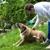 Rover.com Dog Boarding Des Moines