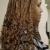 Eve's Africa Hair Braiding