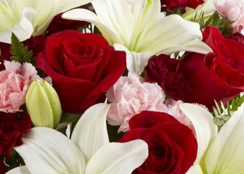 Colonial Florist & Antiques, Gordonsville VA