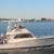 Indiscretion Yacht Charters