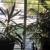 Birdseye View Window Cleaning