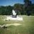 Serene Memorial Gardens & Mausoleum