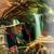 El Michoacan Mexican Restaurant