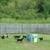 Canine Capers Doggy Daycare