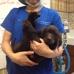 Veterinary Medical Center Of Turlock