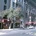 Madison Avenue Liquors Inc