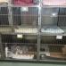 VCA Boulder Terrace Animal Hospital
