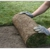 Complete Lawn Care & Fence Inc