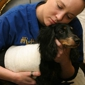 Tampa Veterinary Hospital - Tampa, FL