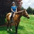 Sarah's Horse and Pet Services