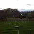 Meadowbrooke Kennel