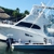 Fishbone and Solutions Fishing Charters