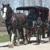 MerryBeth Farm Carriage Service