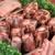 The Pork Chop City