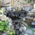 All Seasons Gardening & Landscaping