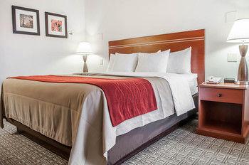 Comfort Inn & Suites, Alamosa CO