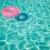 Carlos Pool Service