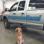 Orangevale Diesel Inc.