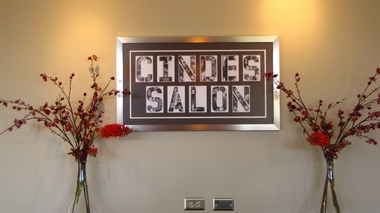 Cinde's Salon, Roselle IL