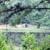 Cherokee Lakes RV Park