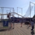 Trapeze School New York At Santa Monica Pier