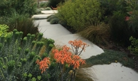 7 Top L.A. Landscaping Trends for 2016