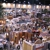 Home Show Management Corp