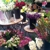Gilded Lily Florist