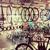 The Urban Cyclist Denver LLC