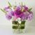 Kampo Floral Design
